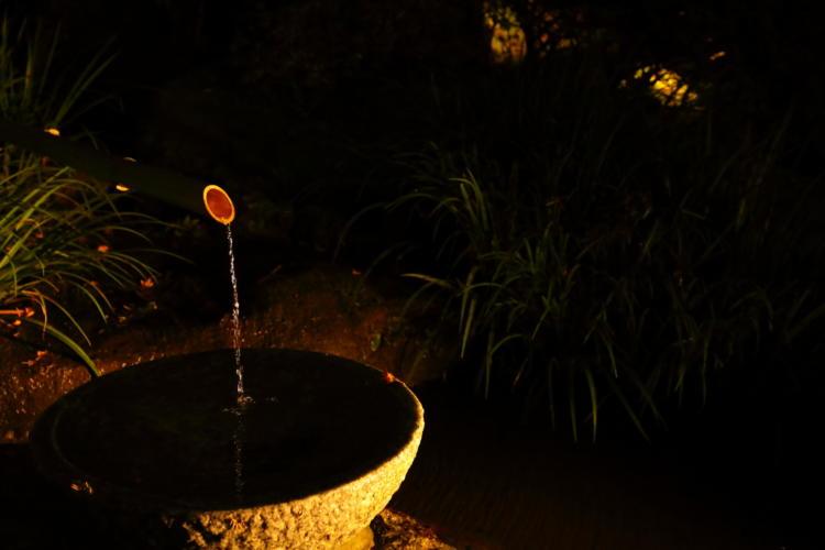 大興善寺の紅葉ライトアップとししおどし