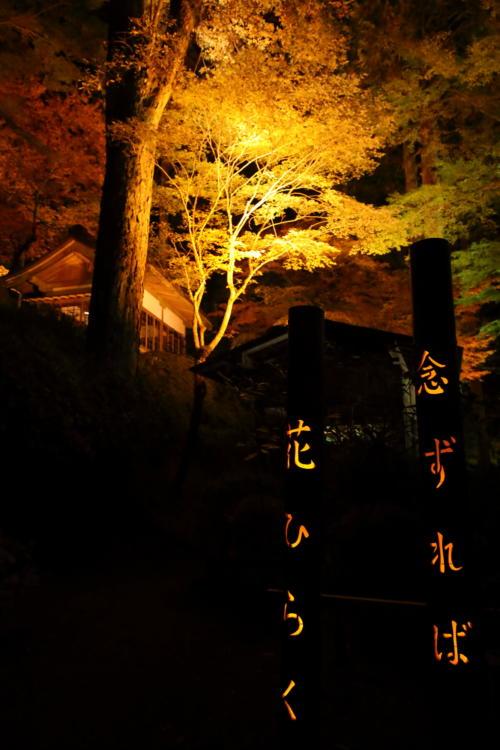 大興善寺の紅葉ライトアップと竹灯籠