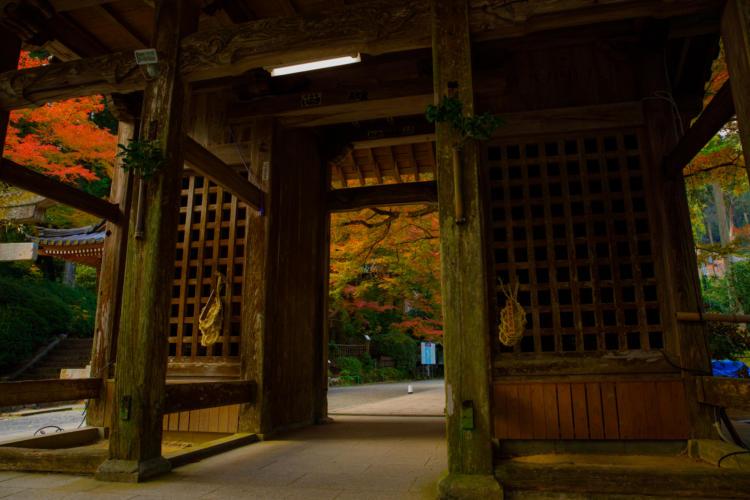 大興善寺の門の紅葉