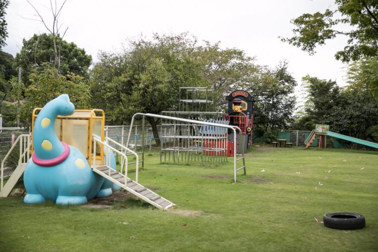 たんぽぽ保育園の園庭の遊具